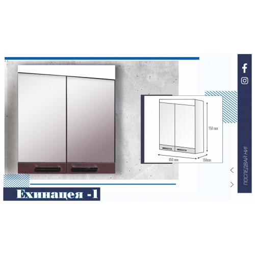 Горен шкаф за баня с HPL покритие и огледални врати - Ехинацея